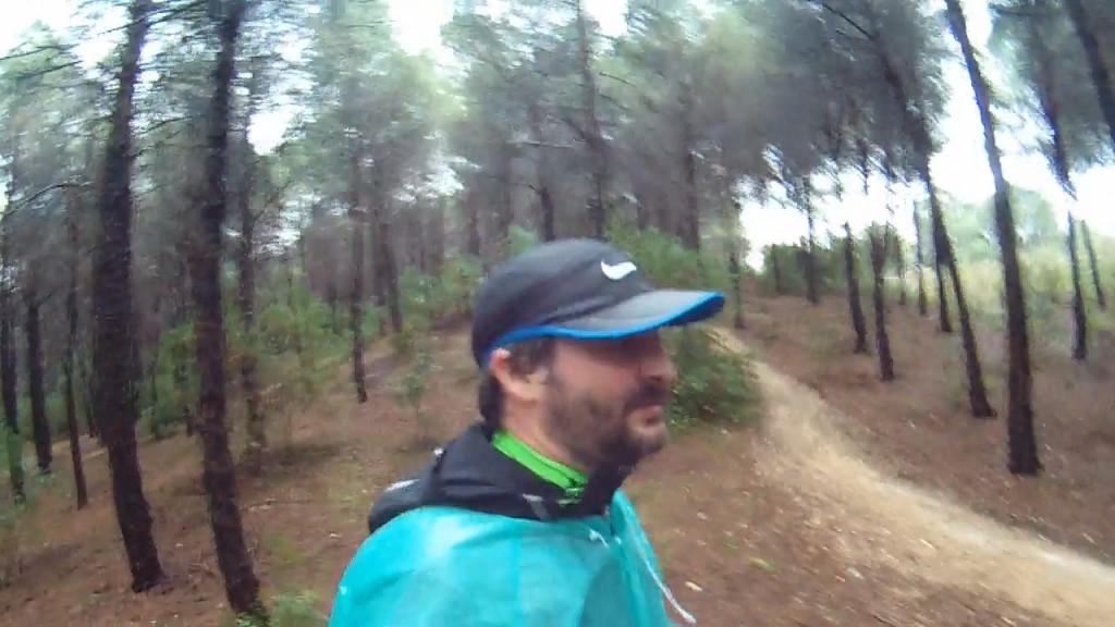 Corriendo entre los árboles
